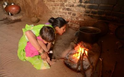 Saving a million trees, one smokeless chulha at a time
